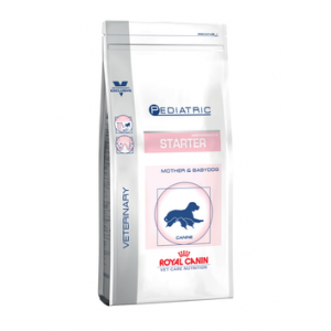 Royal Canin Starter Medium 12 Kg
