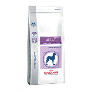 Royal Canin Adult Giant Dog