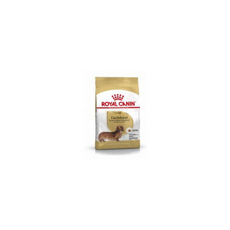 Royal Canin Dachshund Teckel Adult