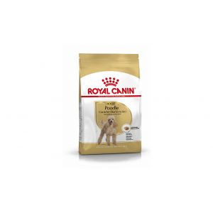 Royal Canin Poodle Caniche Adult