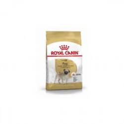 Royal Canin Pug Carlino Adult