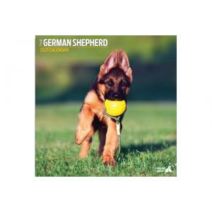 Calendario German Shepherd(Pastor Aleman)