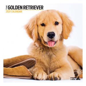 Calendario Golden Retriever