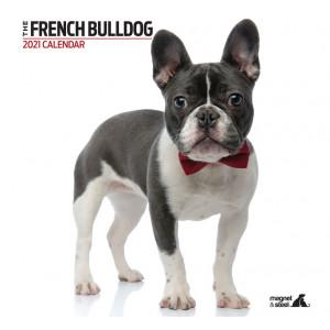 Calendario French Bulldog