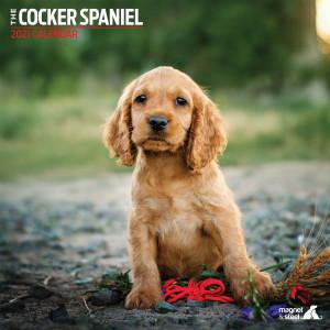 Calendario Cocker Spaniel