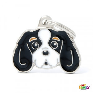 Placa Tricolor Cavalier King