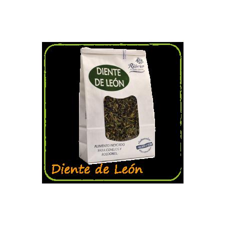 Ribero Diente de León