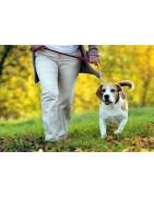 Elementos para pasear a tu mascota. Collar correa arnes petral