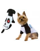 ropa de verano para perros